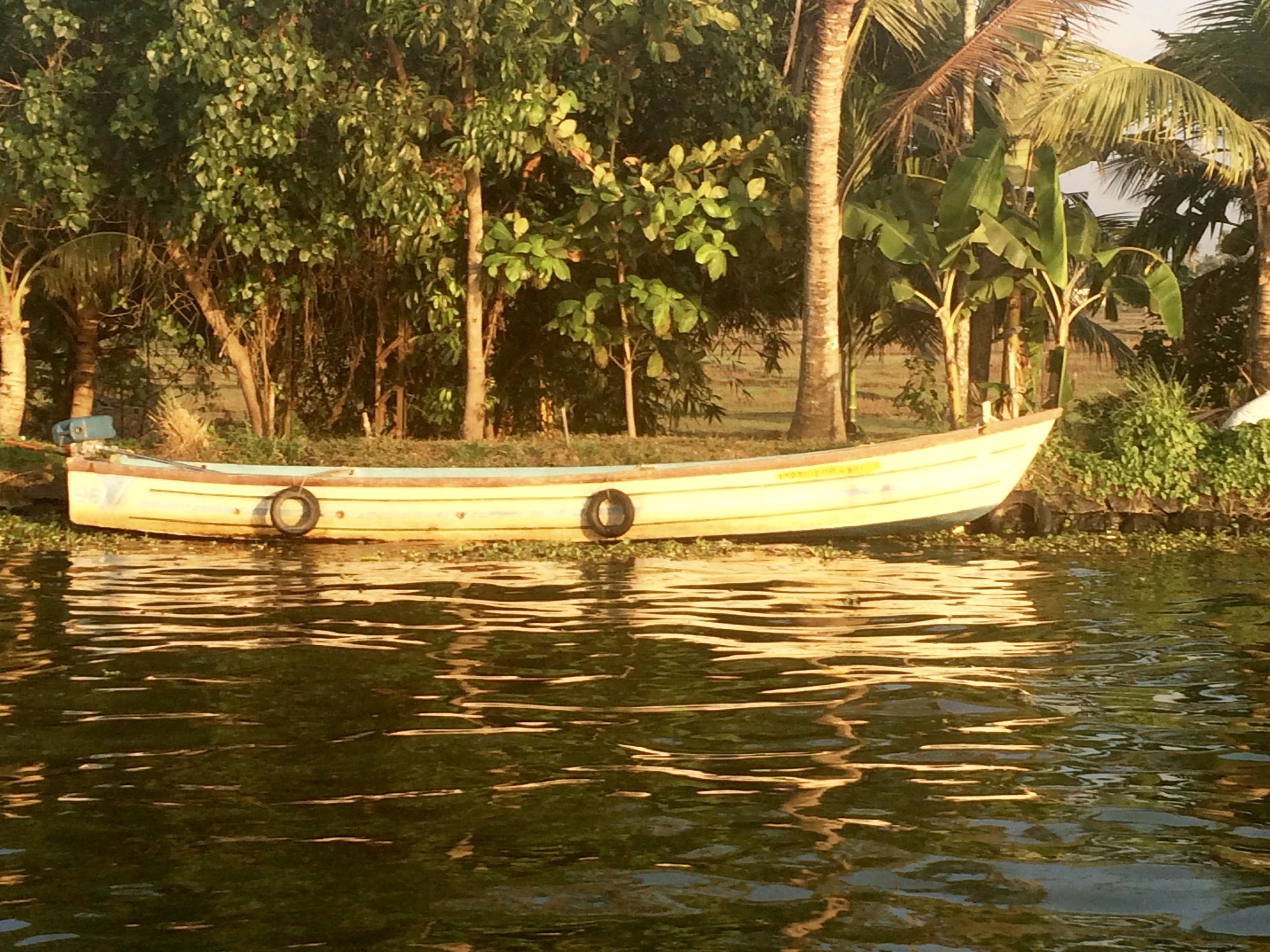 Yogareise nach Kerala im Januar 2017